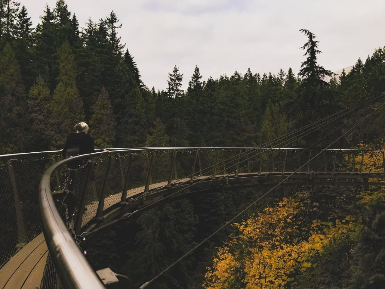 cliff walk at cap suspension bridge